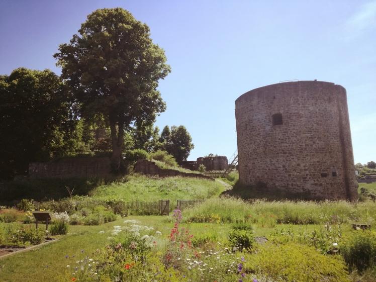 Burg Blankenberg 1